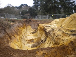 excavation removal